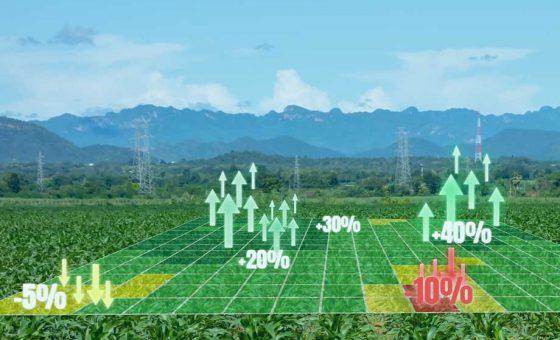 difly-servizi-completi-agricoltura-precisione-aumento-profitti-meno-costi