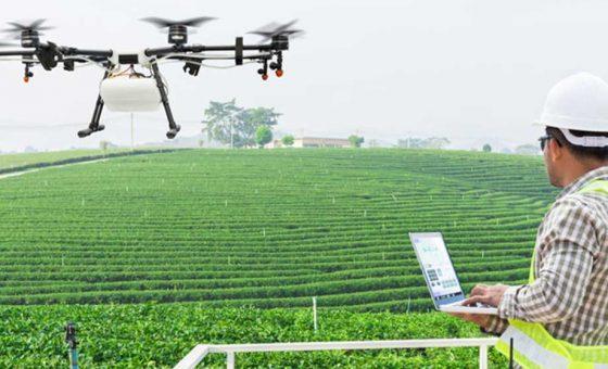 difly-servizi-completi-agricoltura-precisione-tecnologie-avanguardia